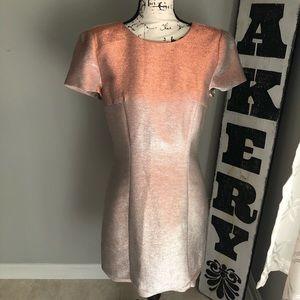 Express Dusty Rose Pink Silver Iridescent Dress O8